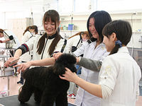 いばらき動物専門学院フォトギャラリー1