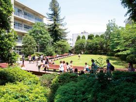 青山学院女子短期大学子ども学科のイメージ