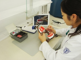 横浜歯科医療専門学校歯科技工士のイメージ