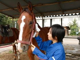 日本ペット&アニマル専門学校動物飼育科のイメージ