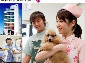 ヤマザキ動物専門学校動物看護学科のイメージ