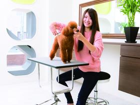 太田動物専門学校ペットビジネス学科 プロトリマーコースのイメージ