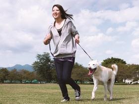 太田動物専門学校ペットビジネス学科 ドッグトレーナーコースのイメージ