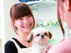 太田動物専門学校ペットビジネス学科 ペットケアペットショップコースのイメージ