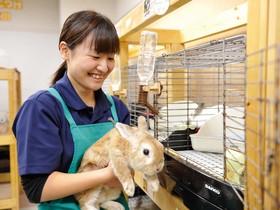 仙台総合ペット専門学校飼育管理科 飼育コースのイメージ