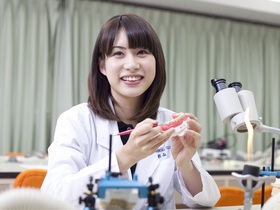 東洋医療専門学校歯科技工士学科のイメージ
