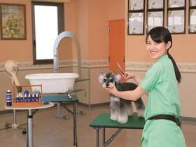 国際動物専門学校美容・デザイン学科のイメージ