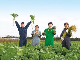 拓殖大学北海道短期大学農学ビジネス学科 環境農学コースのイメージ