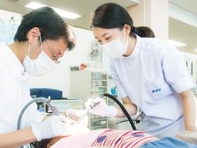 神奈川歯科大学歯学部 歯学科のイメージ