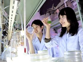 東京薬科大学生命科学部のイメージ