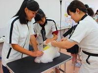 いばらき動物専門学院フォトギャラリー6